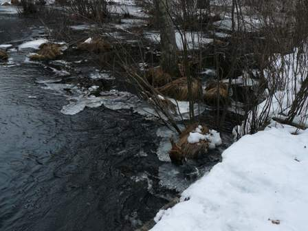 ice melting in Indian Brook