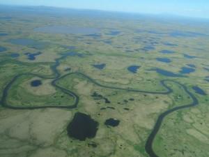Yukon- Kuskowim delta, Alaska.