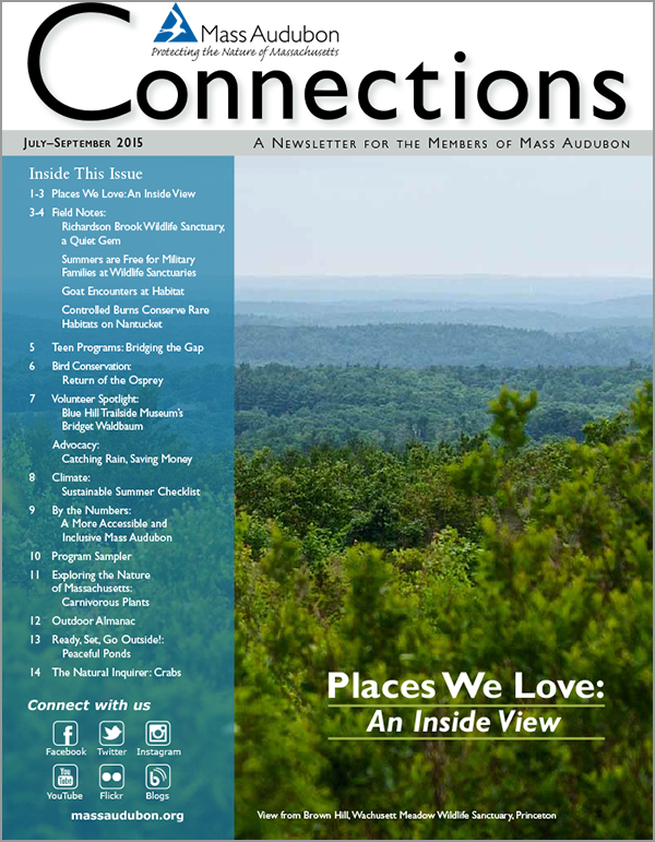 connections-summer-2015-cvr
