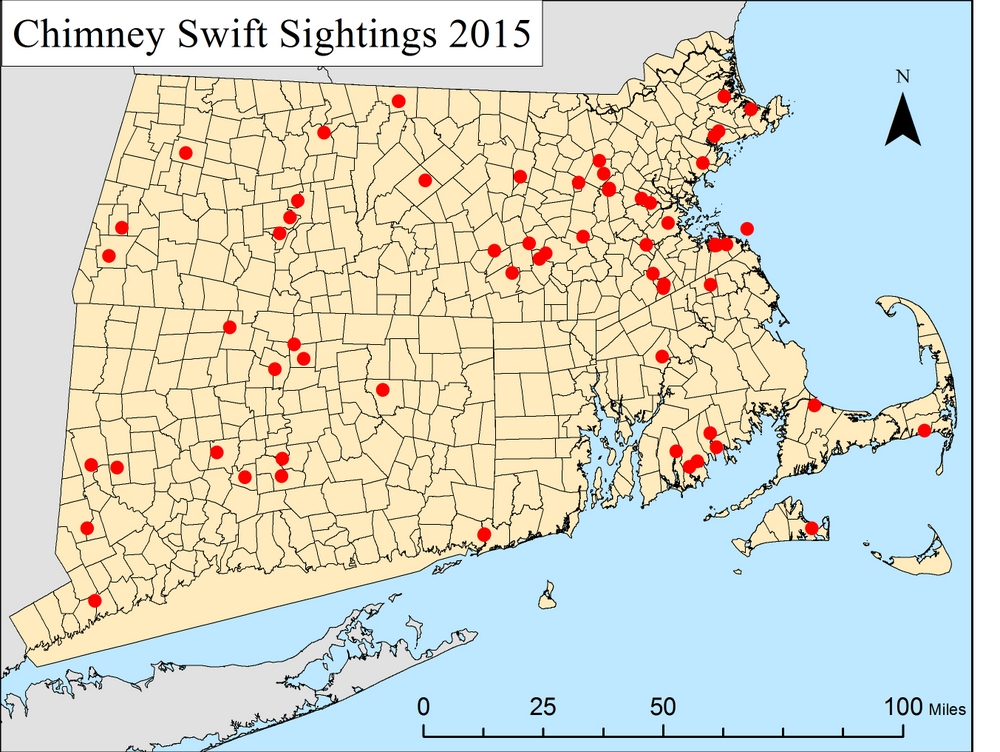 The location of Chimney Swift Sighting reported by citizen scientists in 2015 as part of Mass Audubon's Chimney Swift Project.