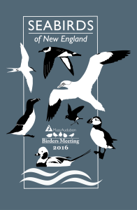 BM2016_seabirds