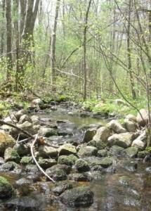 Brook through land in Marshfield