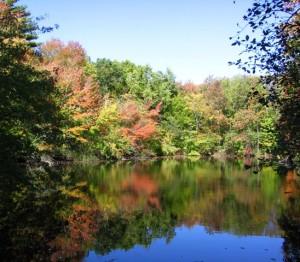 Pond at Attleboro Springs