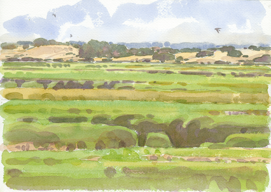 Swallows Over Barnstable Great Marsh 2 - at 72 dpi