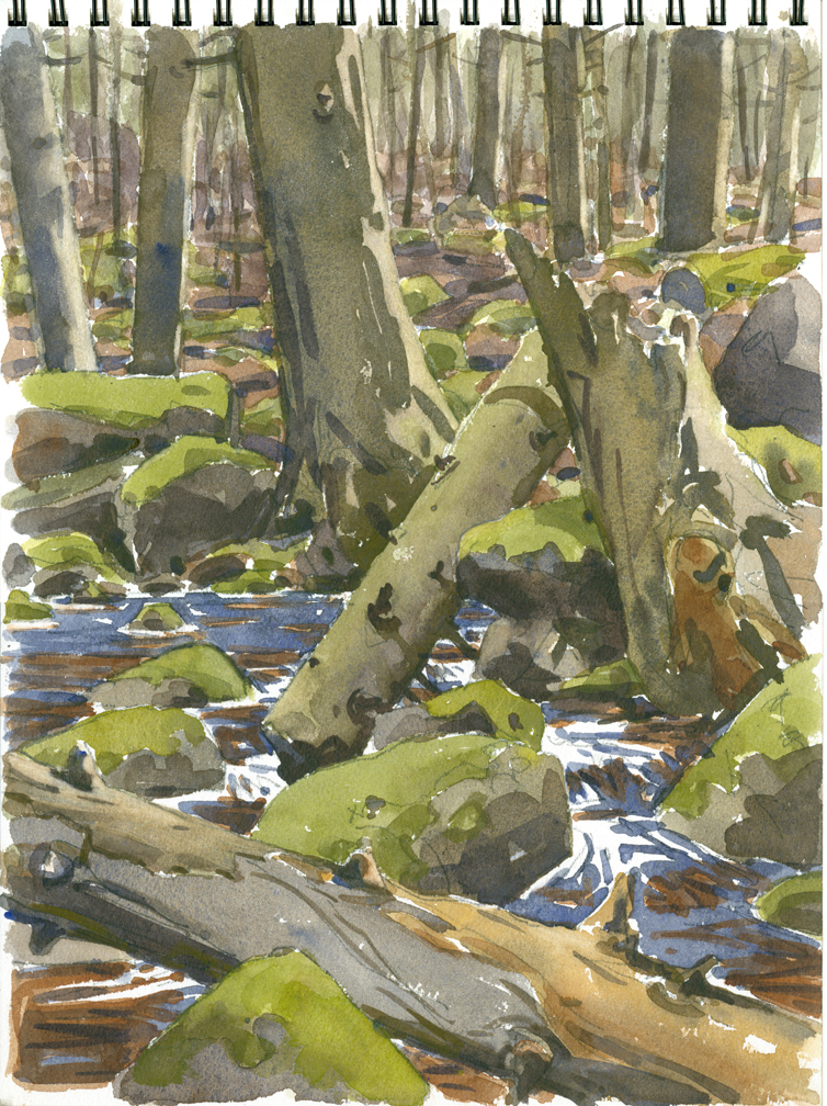 Rutland Brook REVISED 2 - at 72 dpi