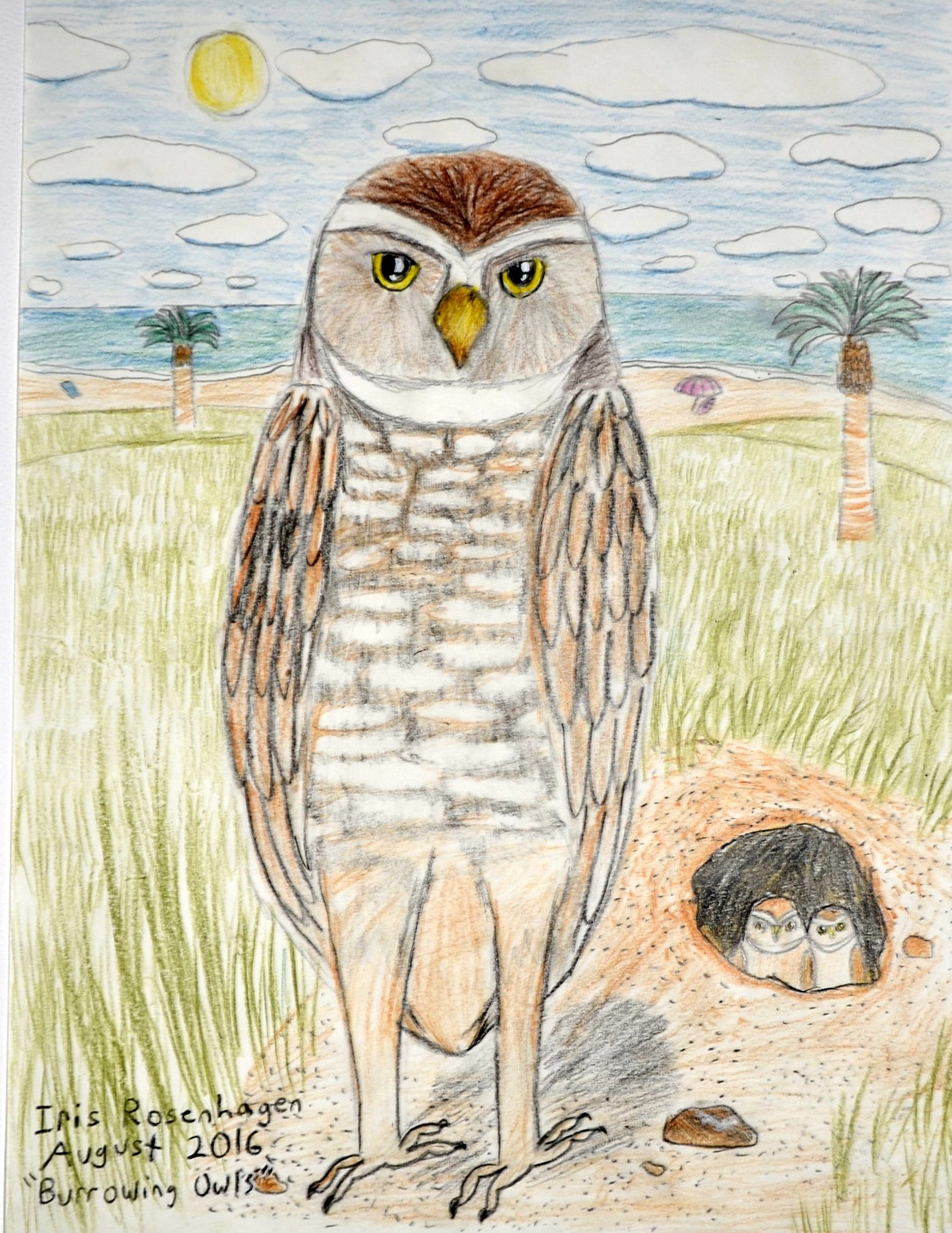 Iris Rosenhagen, Burrowing Owl, Age 11