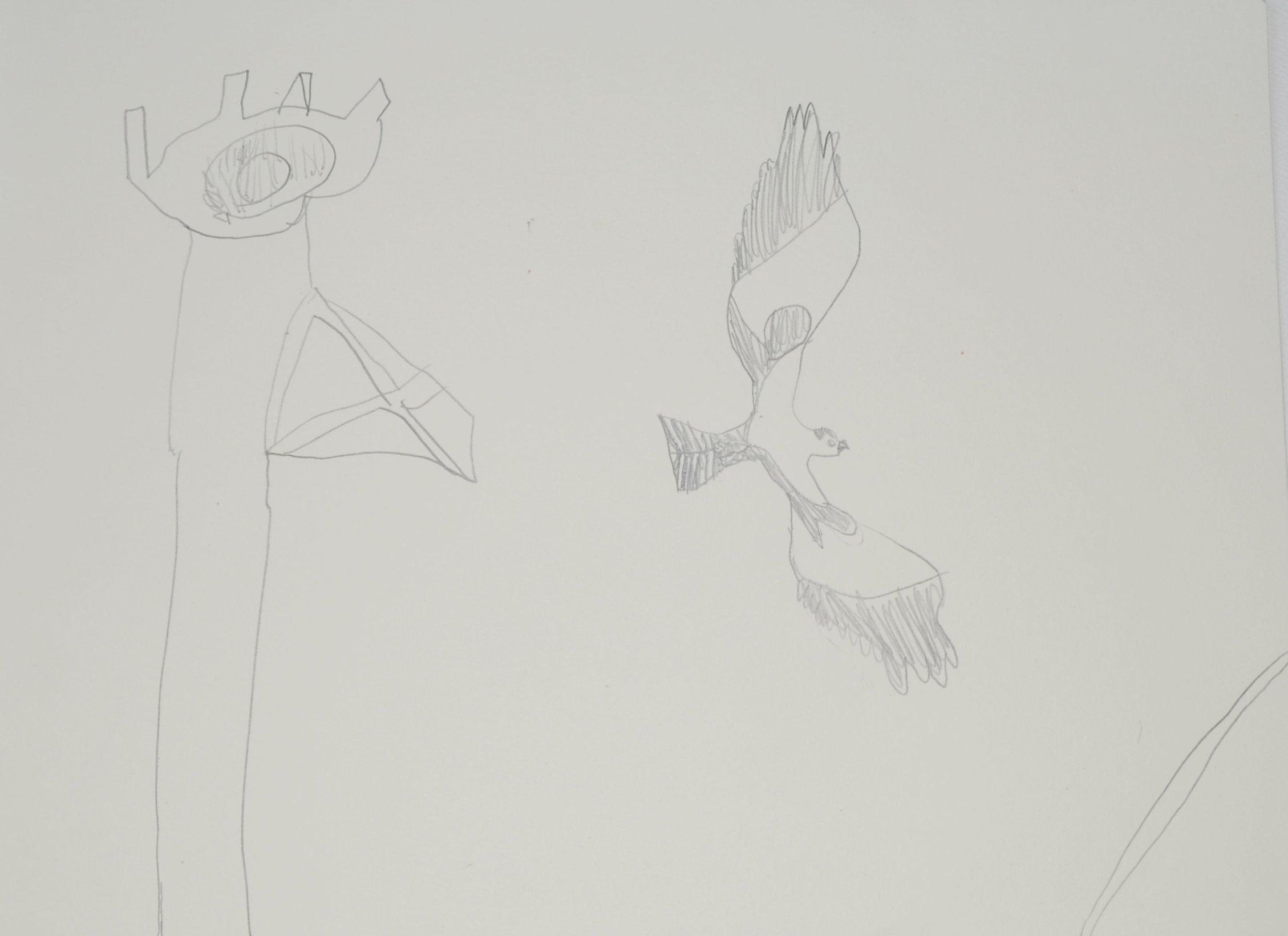 Erica Yennior, Soaring Osprey, Age 7