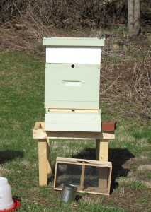 Langstrom Hive