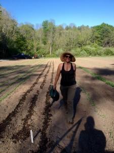 Katarina watering