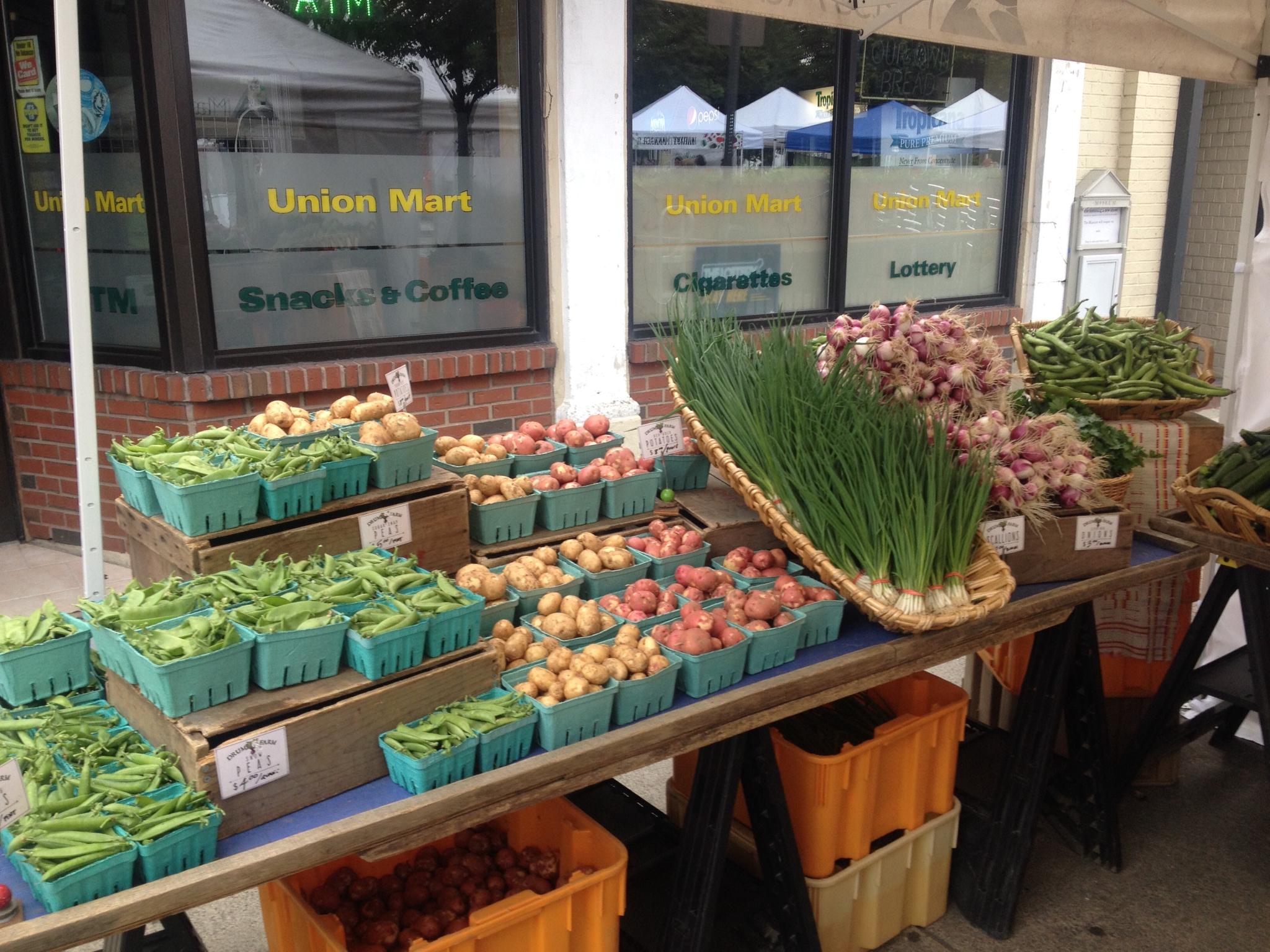 Drumlin Farm at the Union Square Farmers Market_2015 (4)