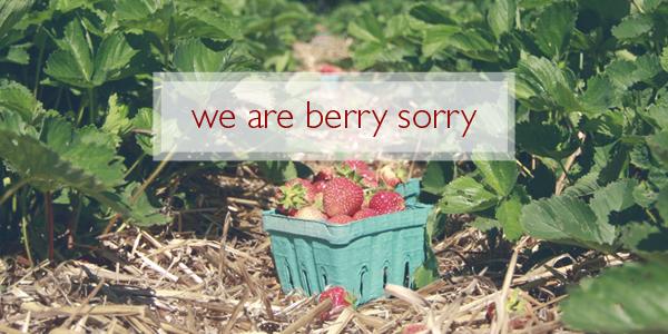 berrysorry_banner