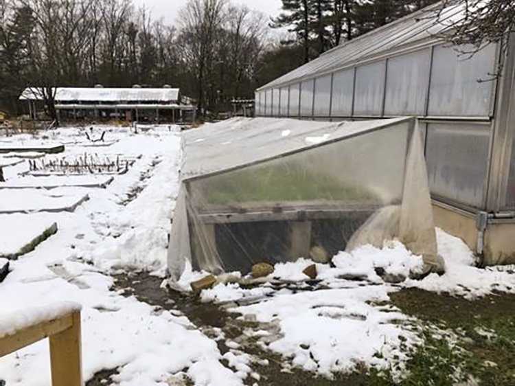 On April 18, several inches of snow tested the strength of our cold frame