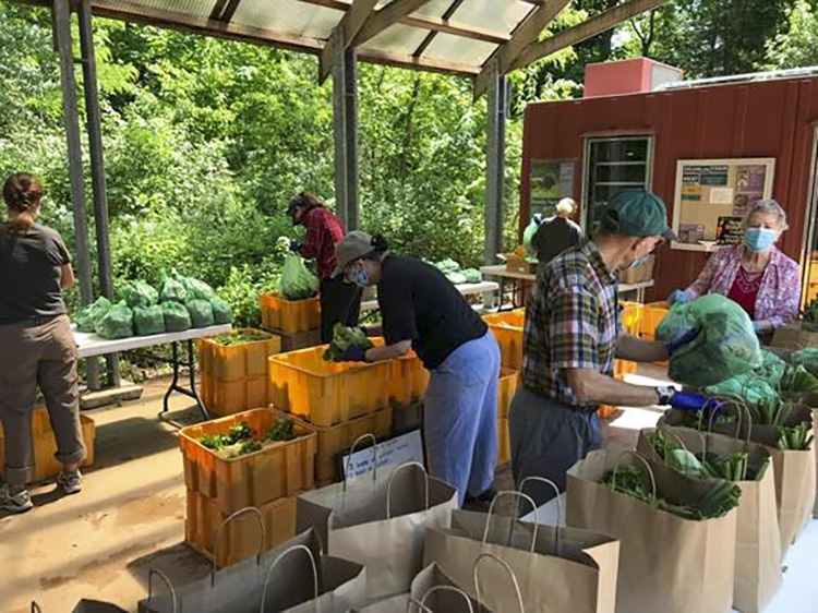 Volunteers Bagging CSA Shares