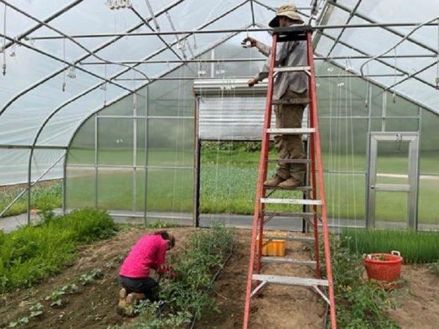 Crops Team Working in Hoop House