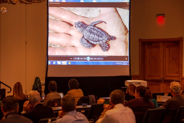 The Second International Kemp's Ridley Sea Turtle Symposium, Brownsville, Texas