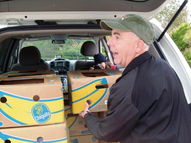 Volunteer Tim O'Brien loads up car with turtles for drive to Quincy