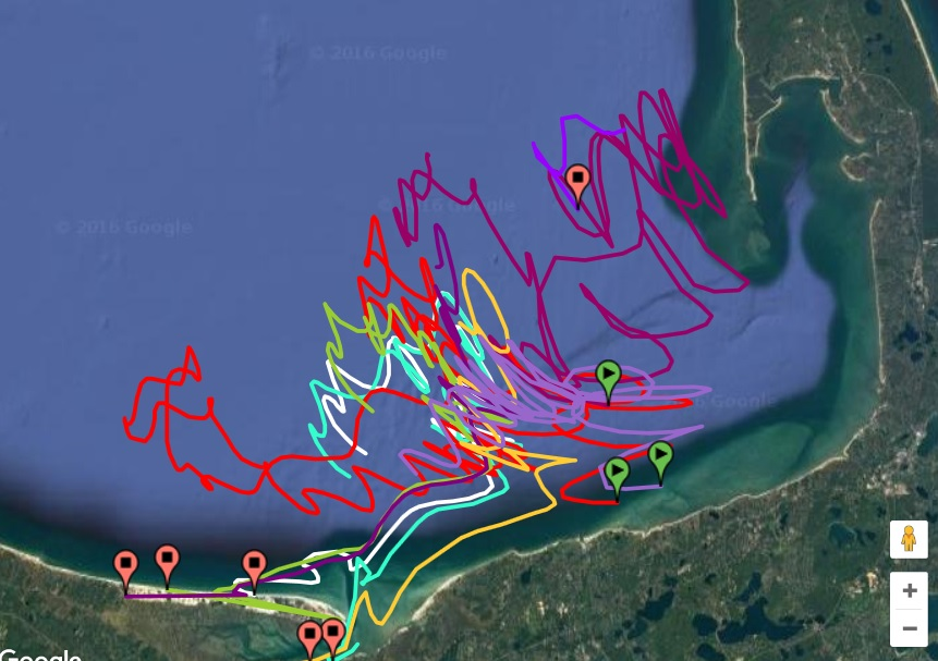 9 drifters were deployed this fall by Nauset and Monomoy students and Wellfleet Bay staff. The green icons show drifters that remain active.