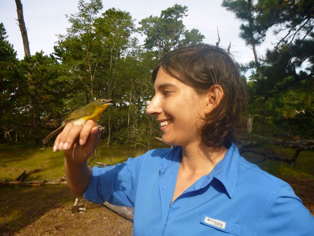 "Bird banding assistant Elora Grahame has a ""chat"" with this banded bird. (photo by James Junda)"