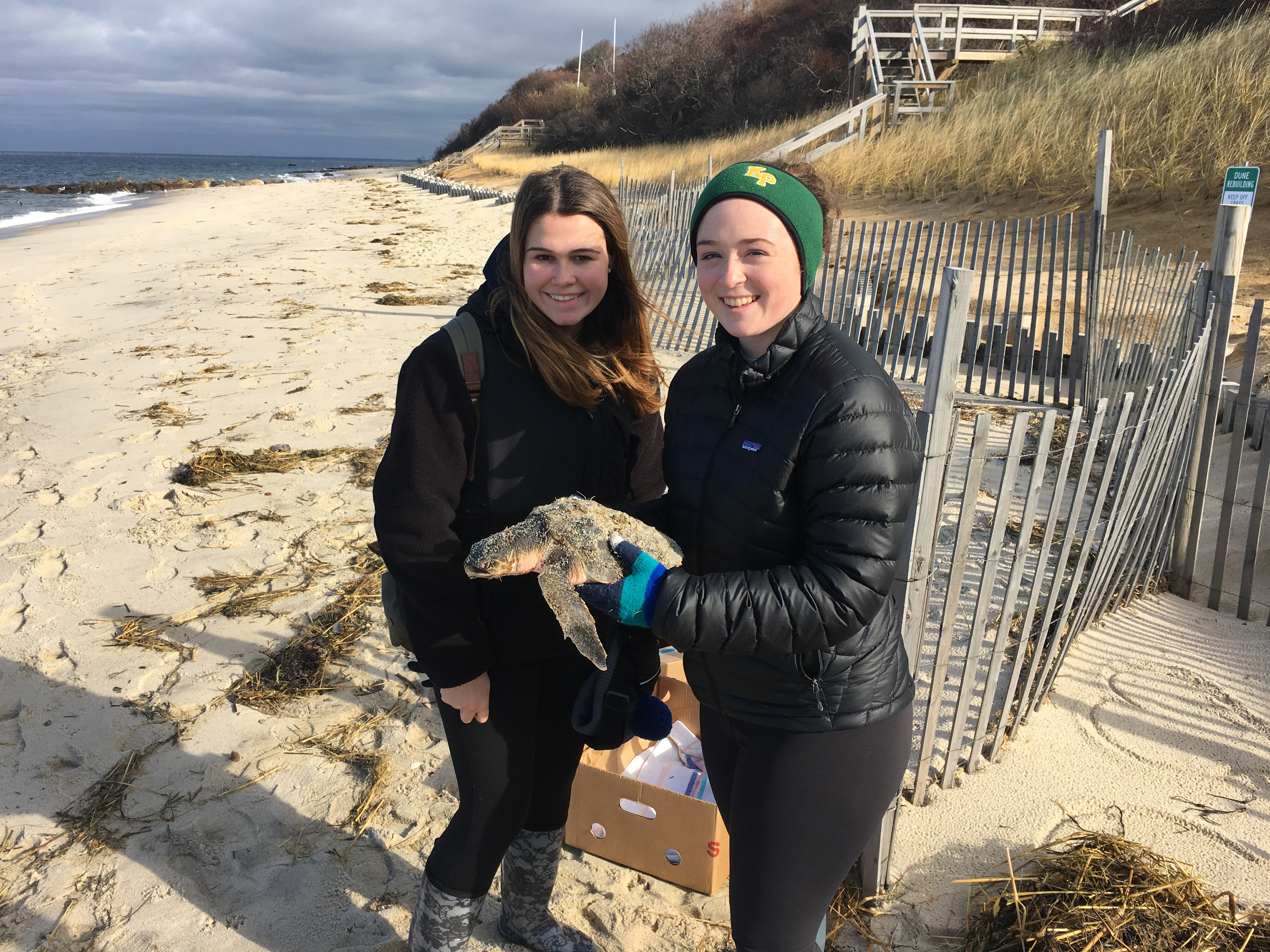 Alex (left) and Abby (right) with a rescued Kemp's ridley