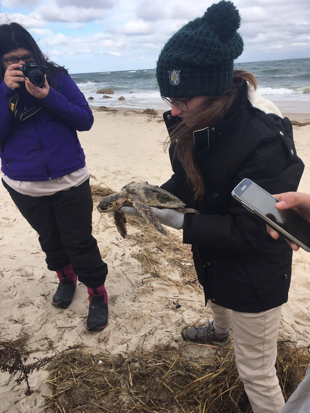 Unity students responded to calls about turtles found on the beach.