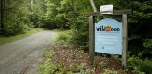 The main entrance way at Wildwood