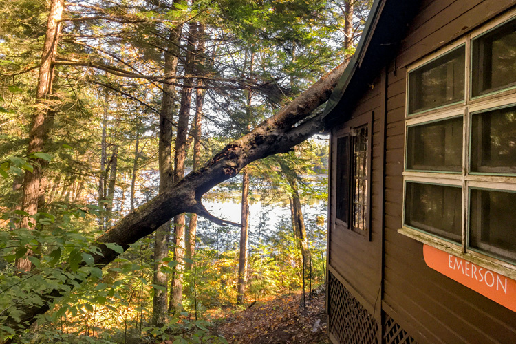 A Tree Fell on Emerson Cabin