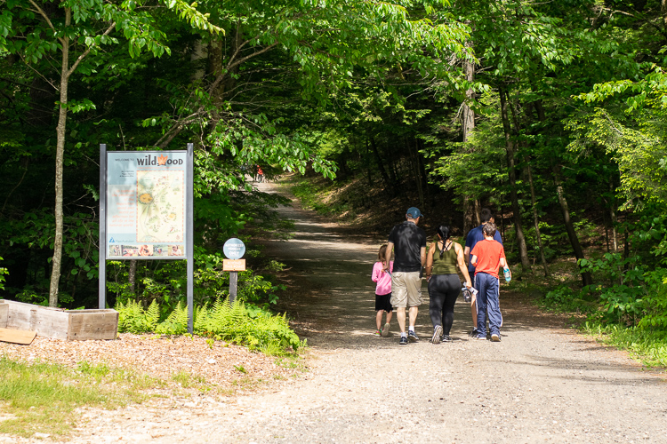 A family walking the road into Wildwood's property