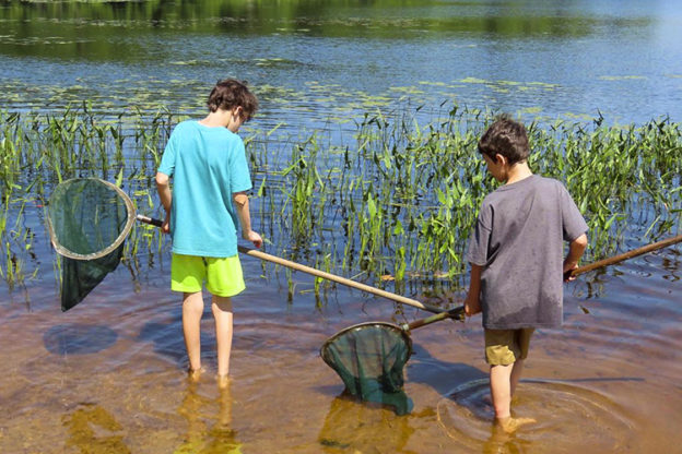 Two boys standing in the pond with dip nets