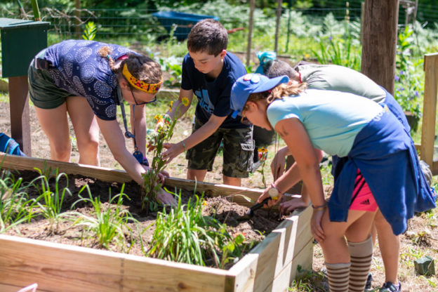 Wildwood staff and campers digging in the garden