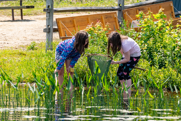 Ponding for interesting creatures along the shoreline