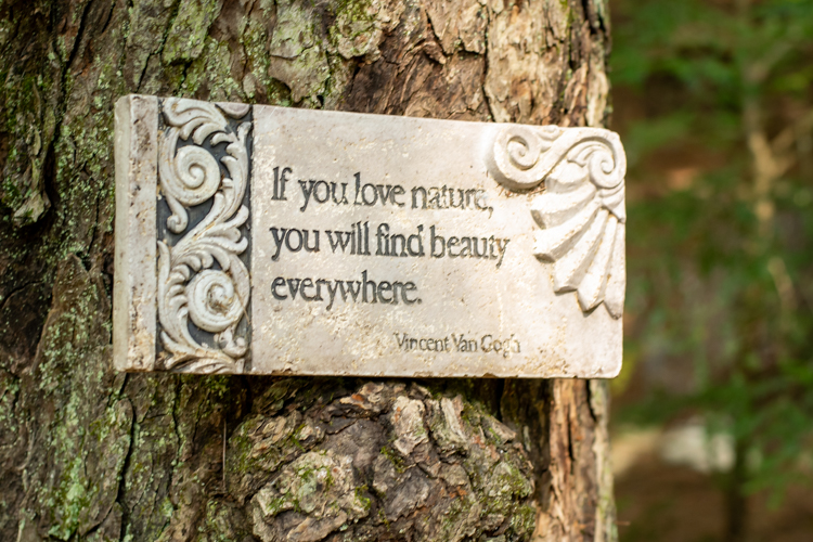 """A sign on a tree that reads, """"If you love nature, you will find beauty everywhere. —Vincent Van Gogh"""""""