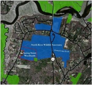 Spring Street Woodlands map