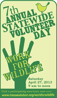 Statewide Volunteer Day