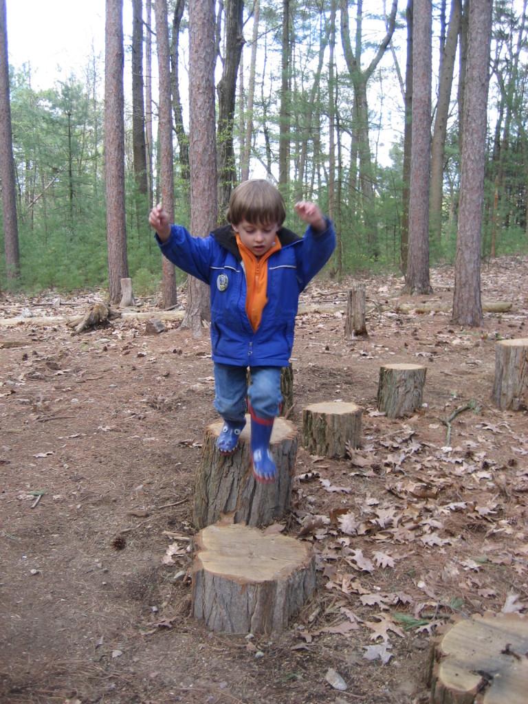 Drumlin Farm Forest Discovery Trail