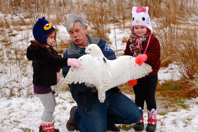 Norman Smith releasing a snowy owl with his granddaughters