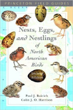 Nests, Eggs, and Nestlings