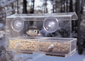 large-buffet-window-feeder