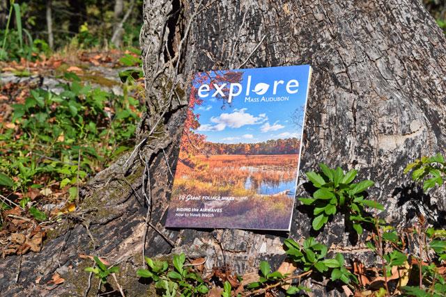 Explore Member Newsletter - Fall 2016