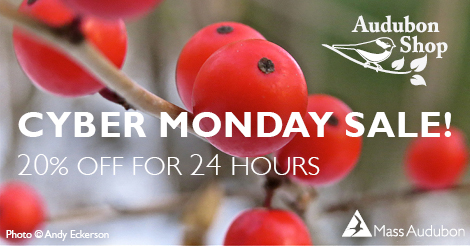 20% Off Cyber Monday Sale in the Audubon Shop Online