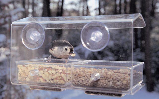 Buffet Window Bird Feeder