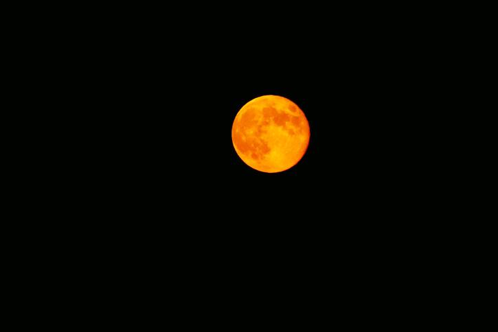 Harvest Moon © Alex Sullivan