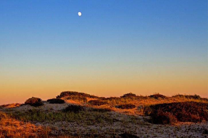 Moon Over Wellfleet Bay Wildlife Sanctuary © Judith Keneman