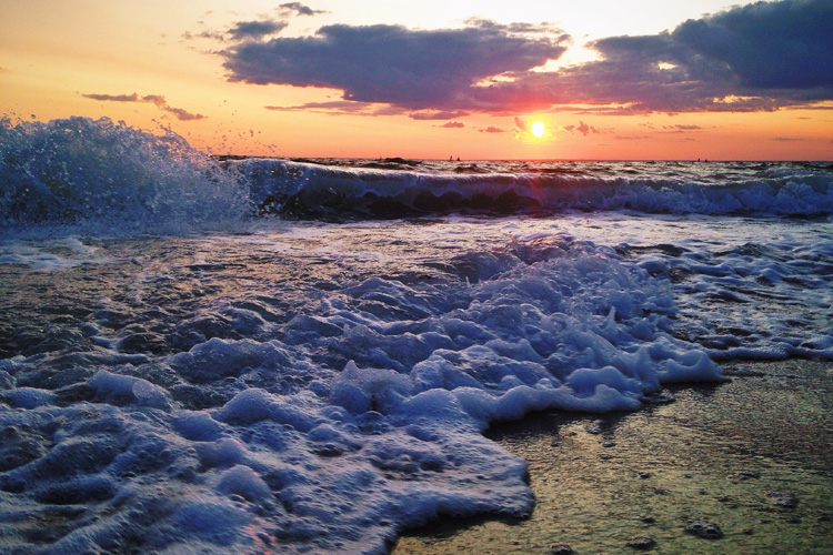 Beach Scene © Emily Zollo