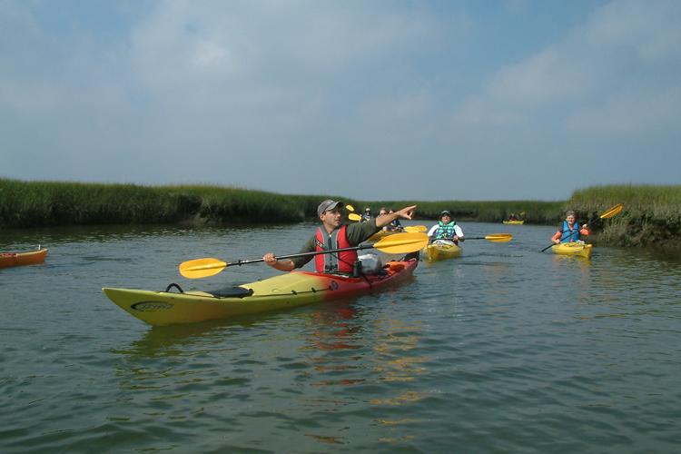 Kayak Long Pasture