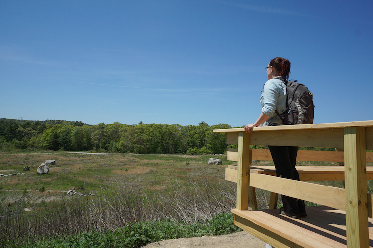 New overlook at Tidmarsh in Plymouth