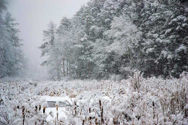 Snowy Landscape © Karen Karlberg