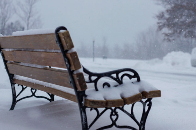 Snowy Park Bench © Priya Ramachanriya Surendranath