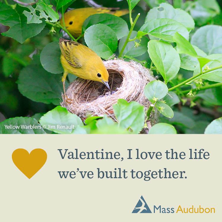 Valentine, I Love the Life We've Built Together