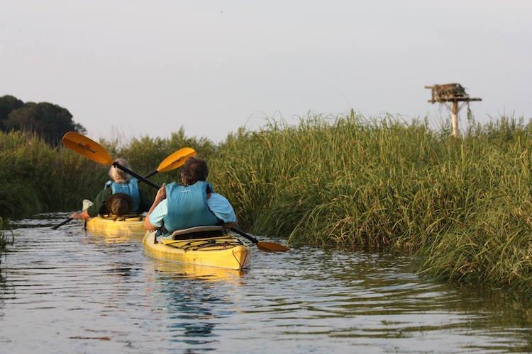 Kayaking with Long Pasture Wildlife Sanctuary