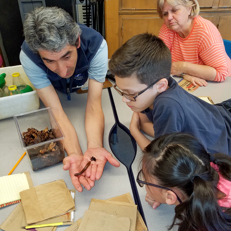 Flavio holding a millipede and showing it to children as part of a school program in Lowell.